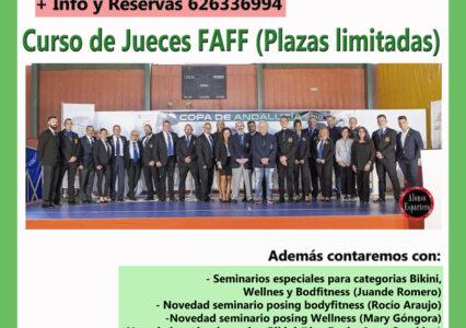 Convención FAFF 2020 (Planificación y horarios)